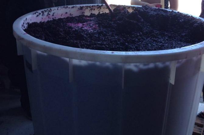 WineFeature