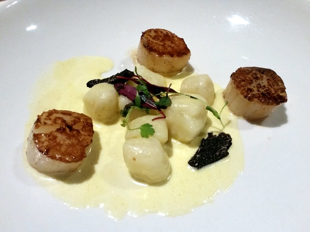 Scallops and gnocchi in truffle cream sauce