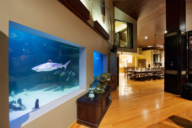 The acquarium links the public and private spaces of the National Zoo and Aquarium.
