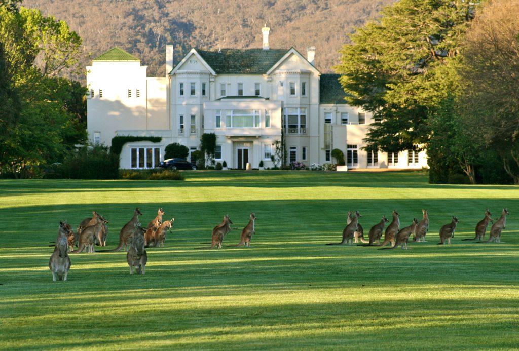 Image via hotel-hotel.com.au