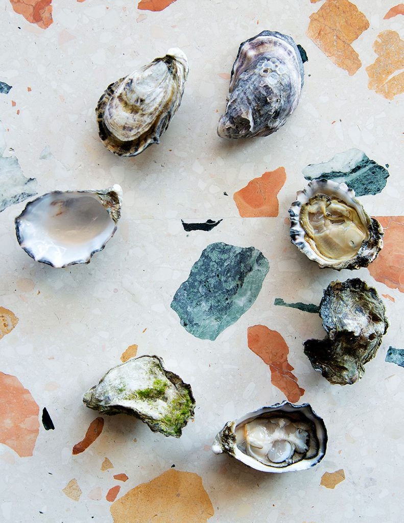 oysters fix and make