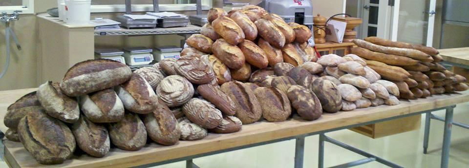 stella rossa bread