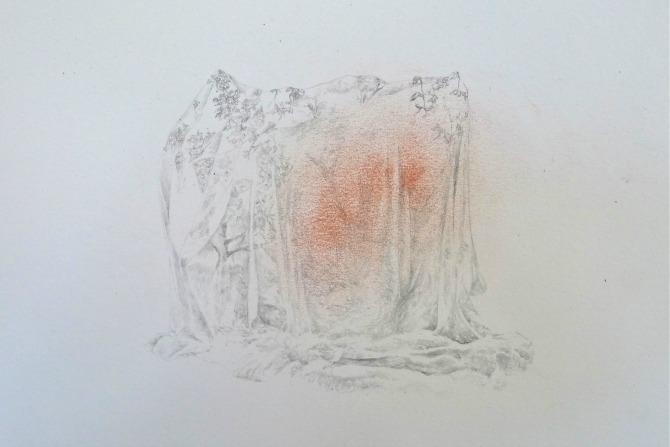 Tree_shroud_1 (1)
