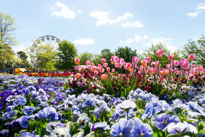 Floriade_feature