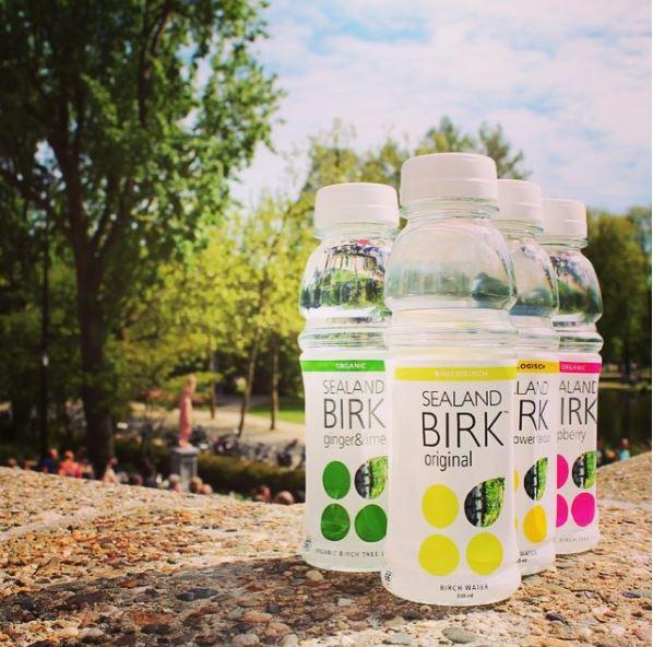 birch-water