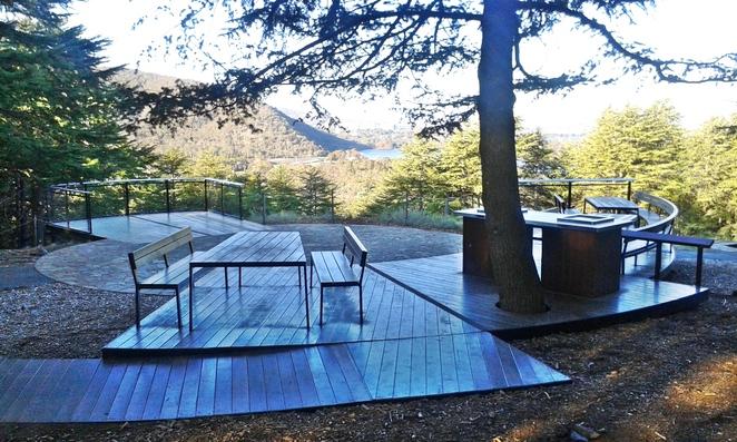 himalayan-cedar-forest-bbq-area-national-arboretum