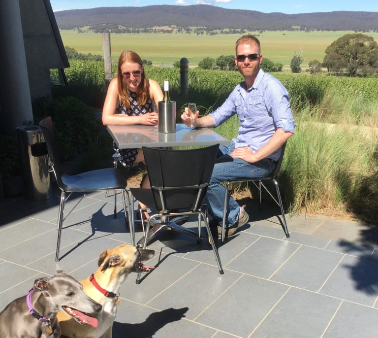 Beautiful views, happy guests and relaxed CDW whippets at Lerida Estate.