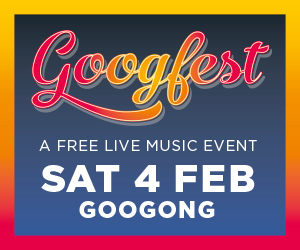 Googfest MREC