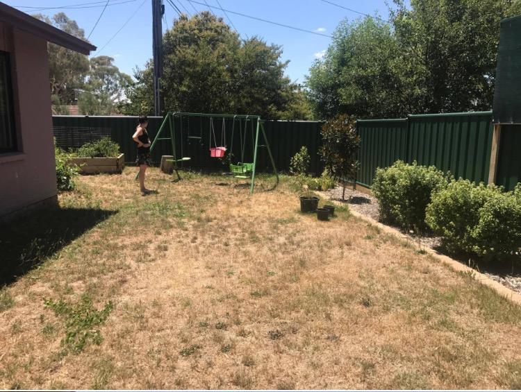 Annabelle's backyard beforehand