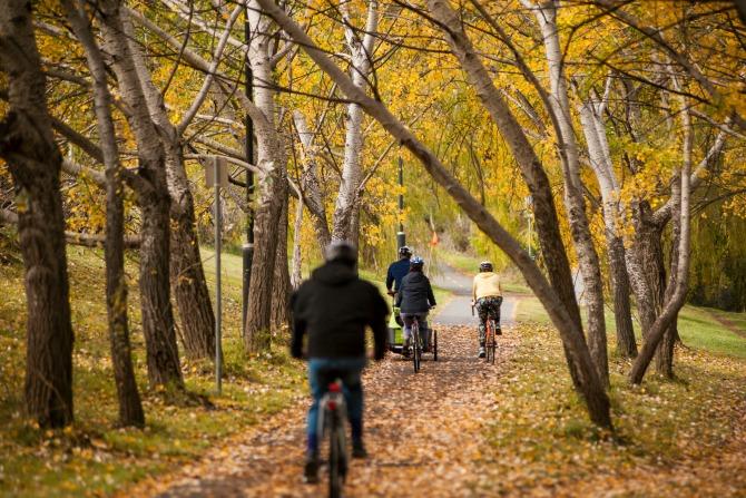 martinollman canberra bike riding_feature