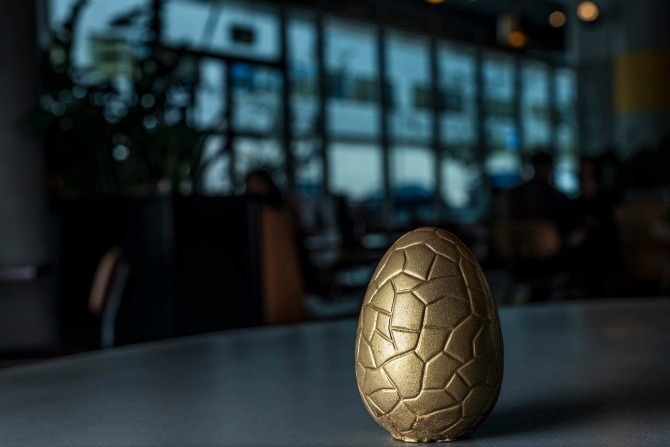 Ricardo's Golden Egg. Image: Tim Bean Photography