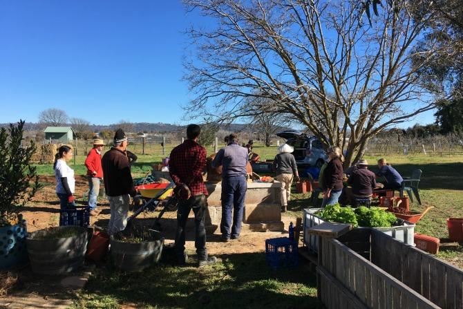 Canberra City Farm Workshop