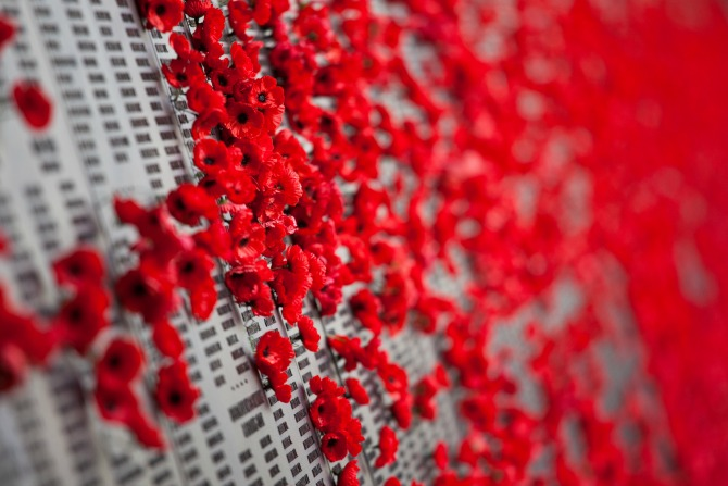 anzac day poppy feature