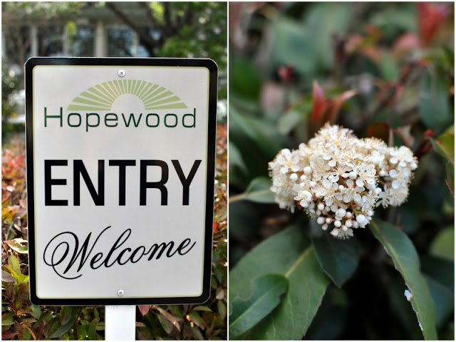 Hopewood Health Retreat: a weekend that was 'all about me'