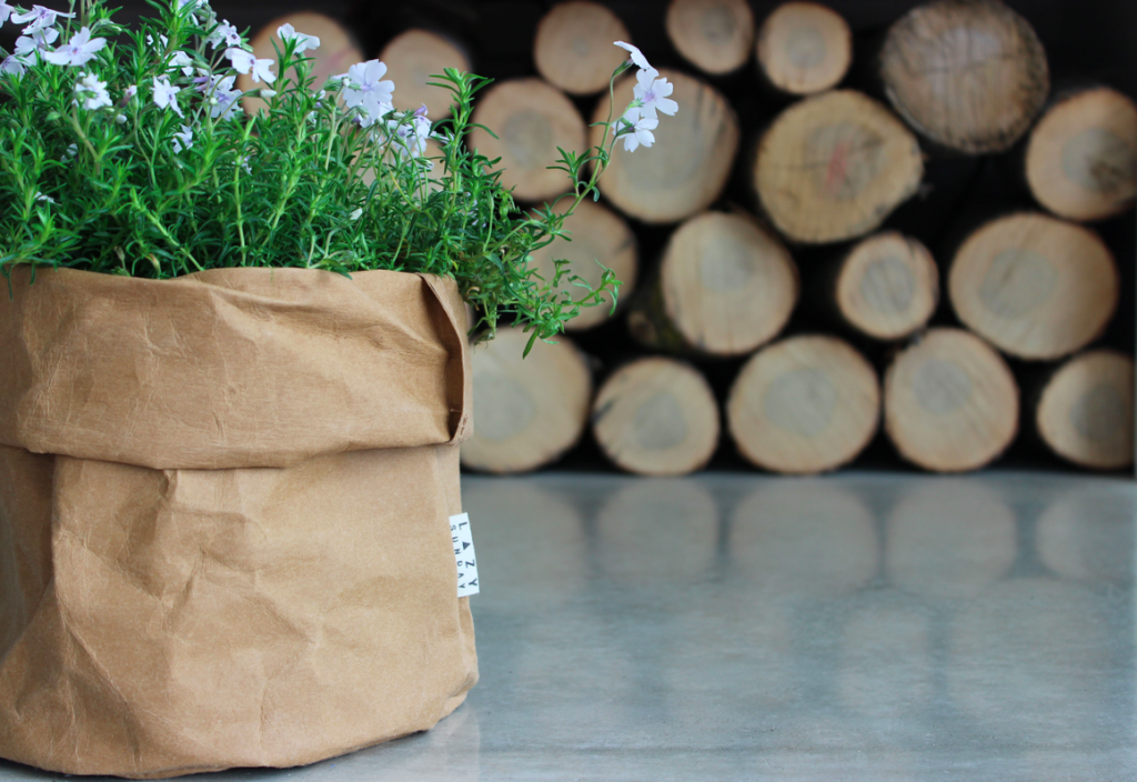 10060_Paper Bags_Amy 2