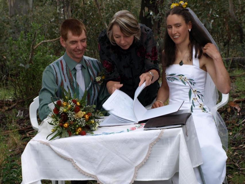 David and Julie at their 'green' wedding.