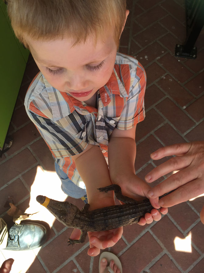 Getting up close and personal with reptiles.