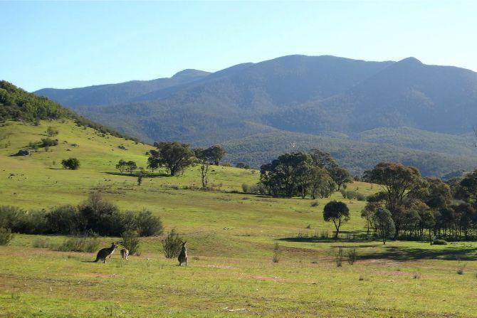 Super Sunday to explore Canberra's backyard