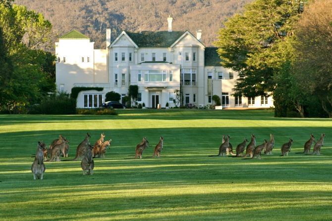 Image courtesy of hotel-hotel.com.au