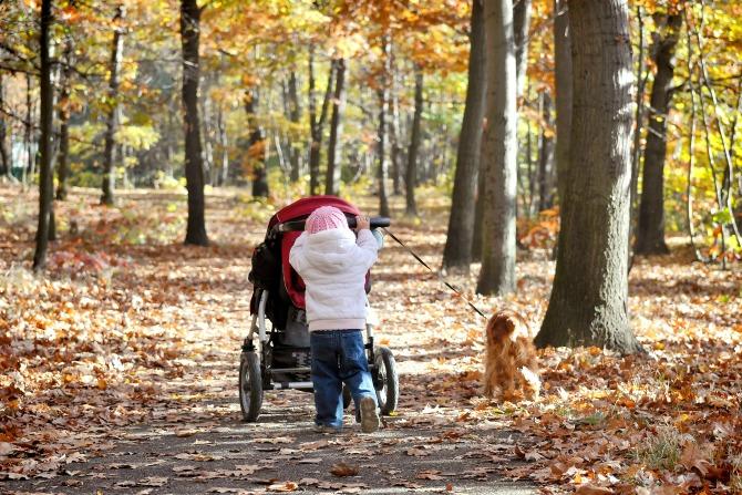 Canberra's best pram and dog friendly walks: Yarralumla dreaming