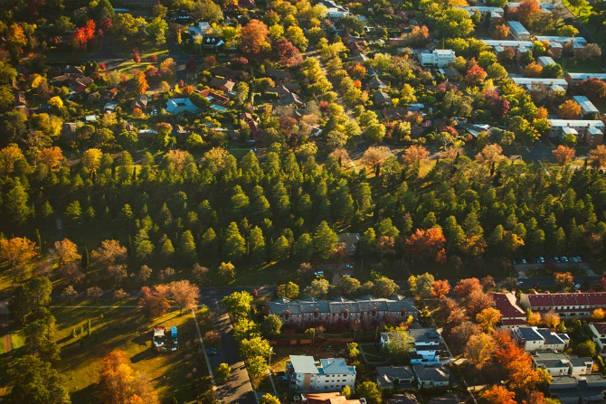 Seven spots for a socially-distanced autumn stroll in Canberra