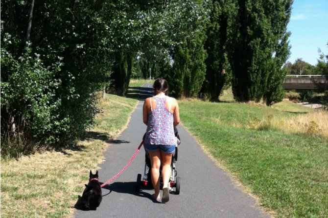 Canberra's best pram and dog friendly walks: Cruisin' in Curtin - HerCanberra.com.au