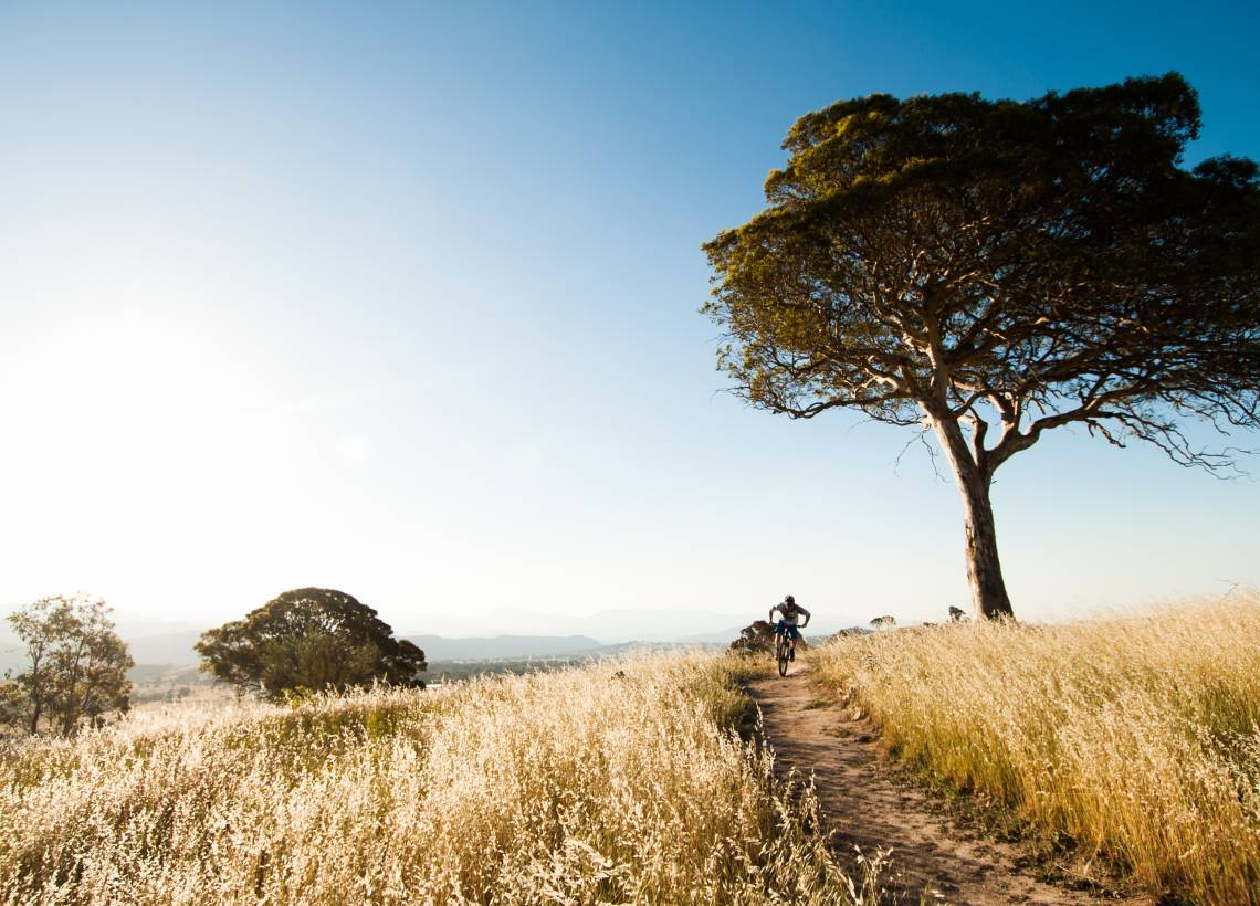 Nine ways to get adventurous in Canberra this autumn
