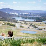 Six spots for a Canberra picnic