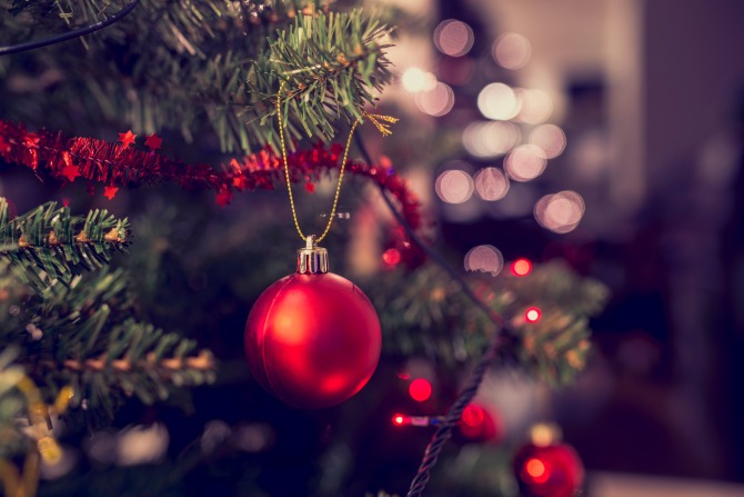 christmas-tree_feature