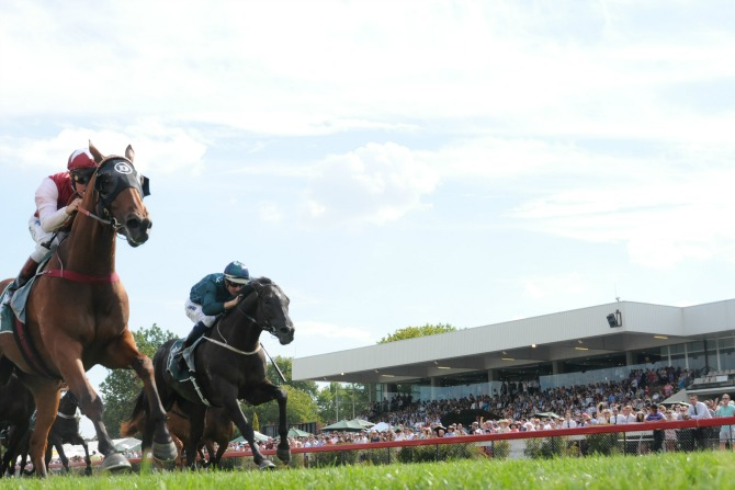 Four Ways to Enjoy Mercedes-Benz Canberra Black Opal Stakes