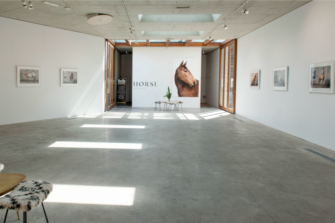 HORSE Exhibition at Nishi Gallery, 2016