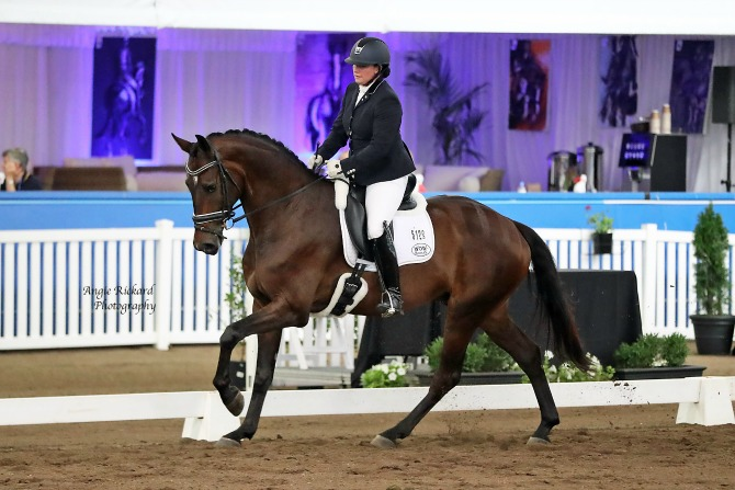 Danielle and Hollands Bend Skyfall at Dressage with the stars. Image supplied.