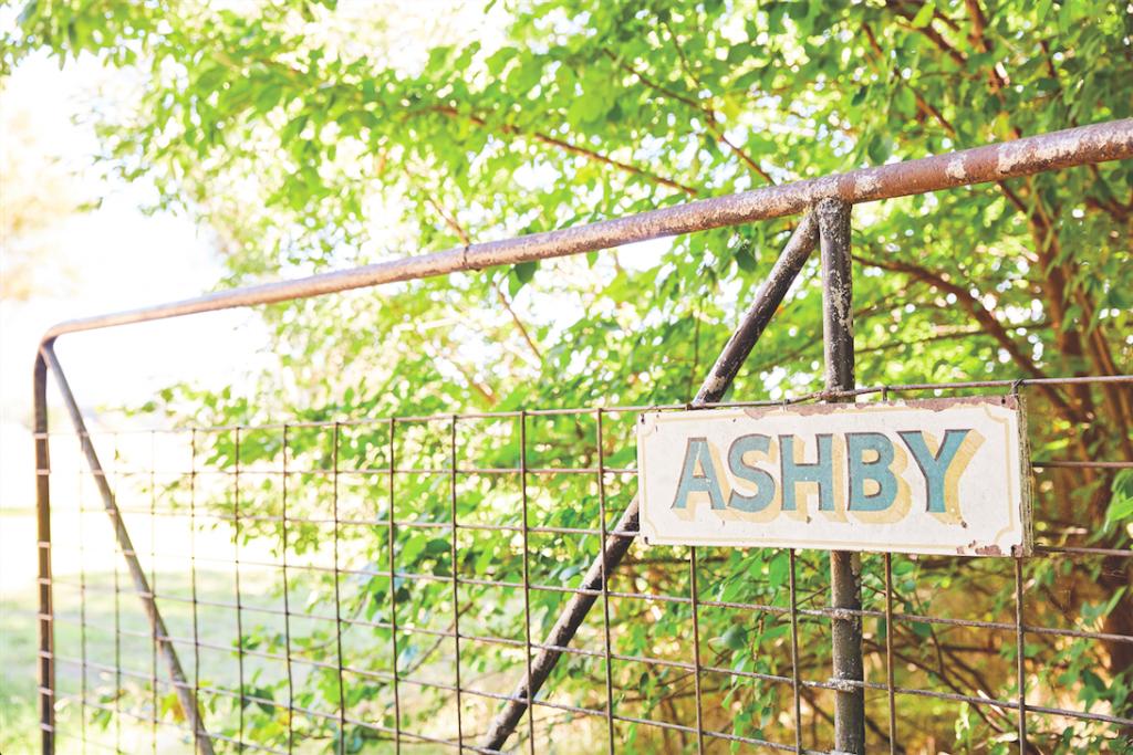 Ashby_Lightbulb_2