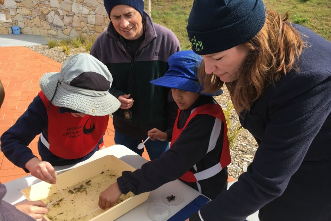 Swapping books for bugs: Outdoor Classroom Day