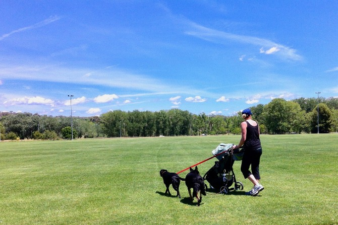 Canberra's best pram and dog friendly walks: Kambah capers