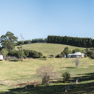 A Canberran's guide to The Southern Highlands