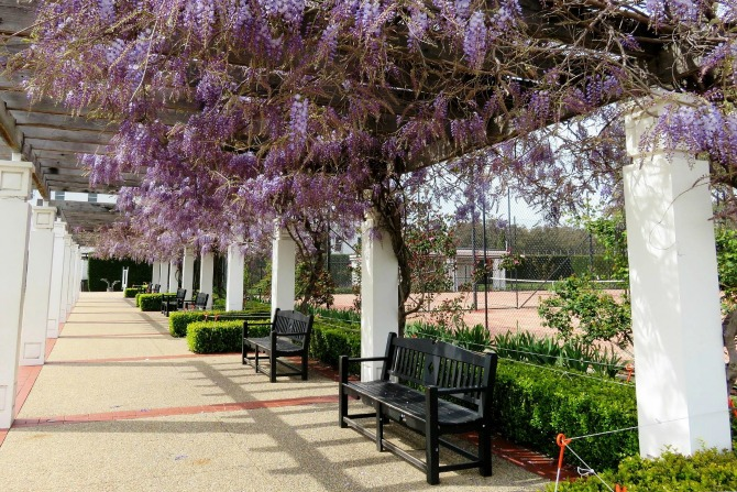 f2f82b298a Five hidden Canberra gems that even you might have missed
