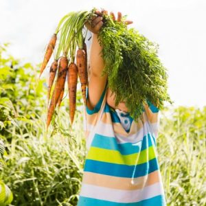 Sustainable Life: How to plant a veggie patch with your kids