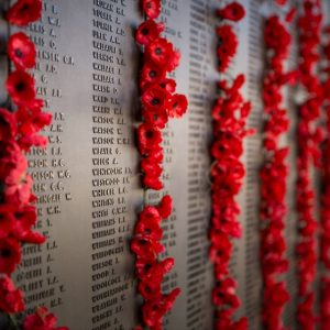 Explore the Australian War Memorial ahead of ANZAC Day