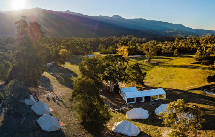 Local Loves: A Wild Night Out at Tidbinbilla