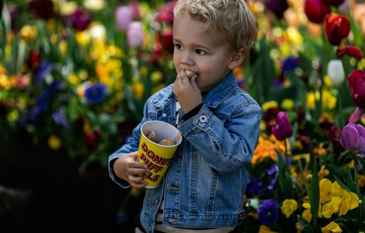 Seven blooming good ways to celebrate Floriade: Reimagined this school holidays