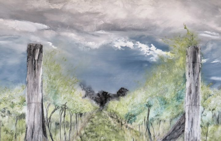 A seven-year harvest: Kylie Fogarty's In The Vines exhibition