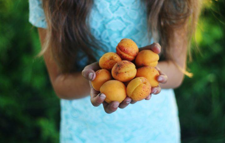 Sustainable Life: Stone fruit harvest recipes