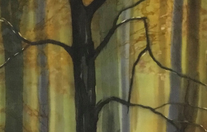 Paintings on Silk by Carole Osmotherly: A Solo Exhibition
