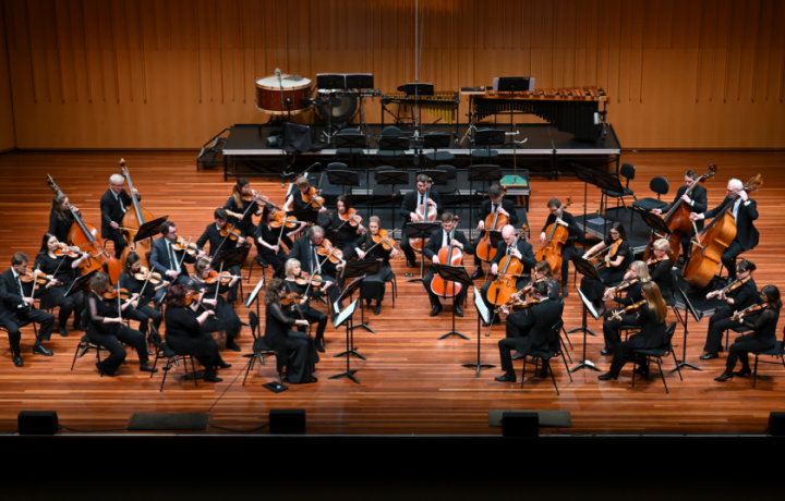 Are you raising a future Canberra Symphony Orchestra musician? This new program could be for them.